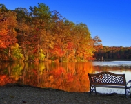 5x7-75-the-bench-in-autumn-ice-lakes-rice-twp-77f5a12ca931741d679aa7e71889495236676287