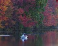fishing-on-the-lake-ice-lakes-75-0d58177b3f6f3a89d5c9055e3ba2cf1f926390a8