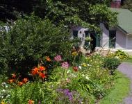the-garden-4642f195982c9ad64cd6a71150e9aa6e888700ba