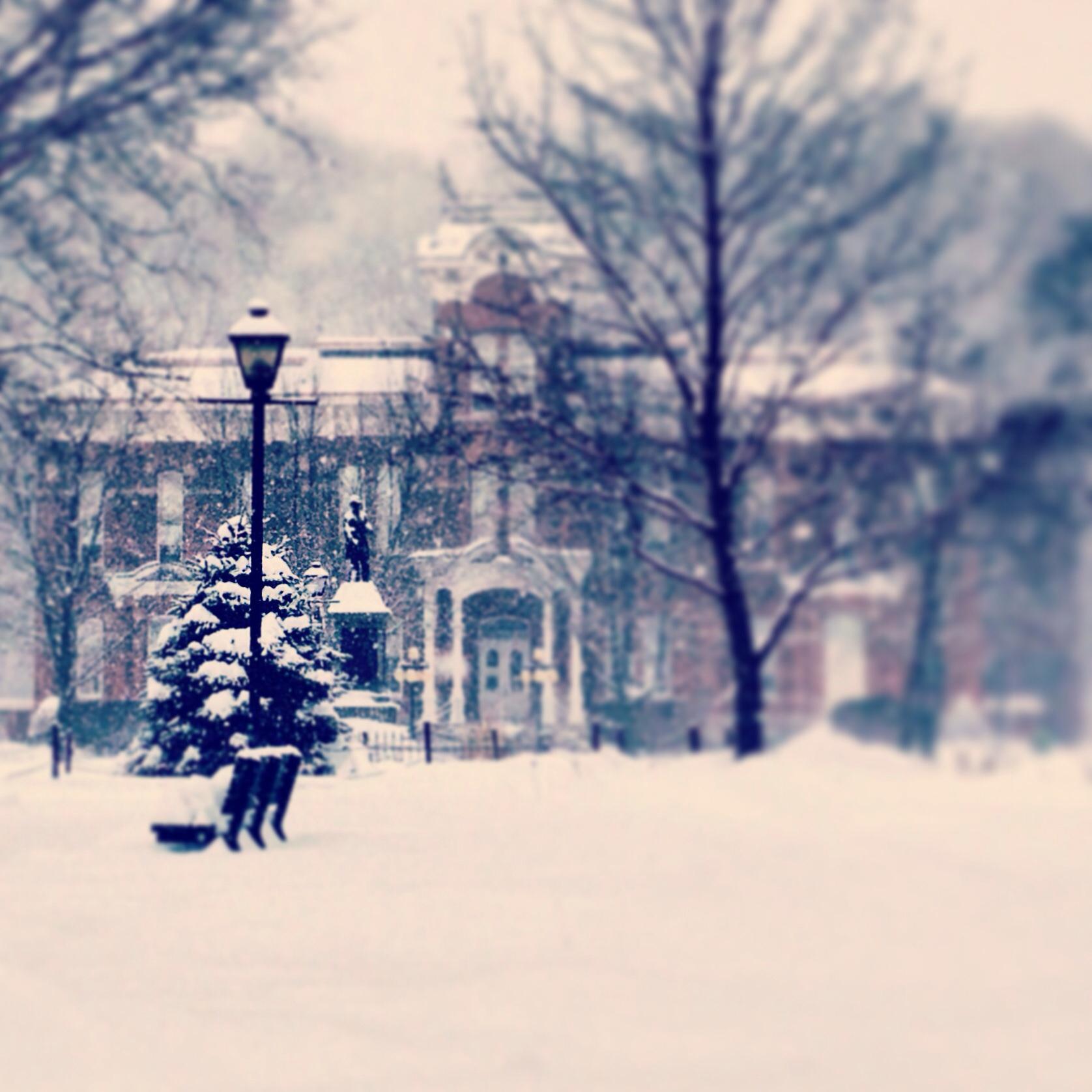 Winter Wonderland Honesdale Central Park