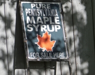 5x7-75-maple-syrup-for-sale-6e103c7a1d855e65771e708a9334334e0bb17fce