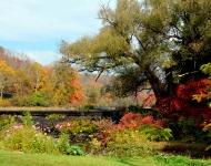 autumn-at-bunnells-pond-c35313dbe039e79b530c321ea0d1a898a69c7e39