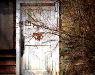 autumn-door72-66d5b06f58f75f5fe52571c52ea5e3a27c27e82b