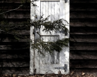 white-door-in-the-woods-75-5x7-7be2d58672cc524214383533d2b605d54049ddb1